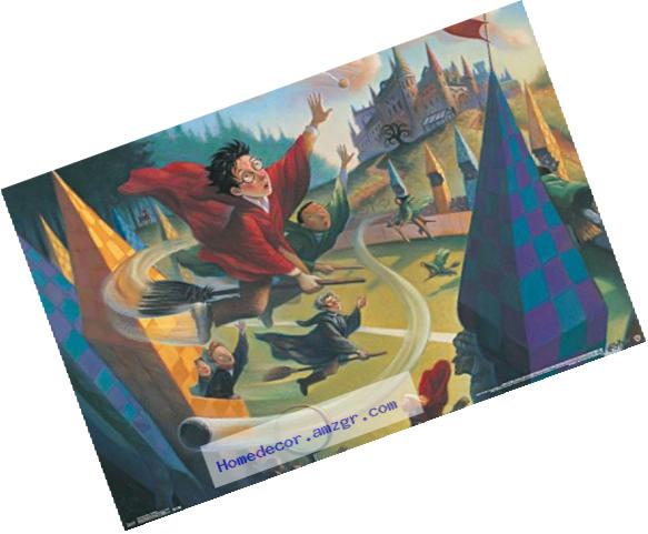 Trends International Harry Potter Quidditch Wall Poster 22.375